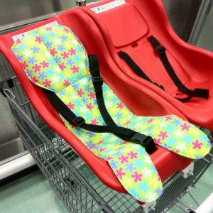 Trolley-Baby-Capsule-Protector-2